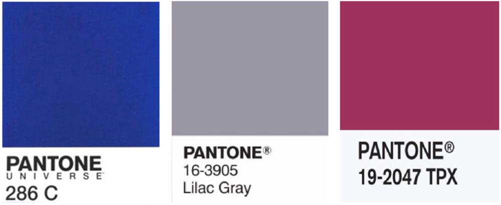 Colori logo e sito de lucca
